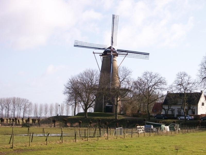 Molen-De-Prins-van-Oranje-in-Buren