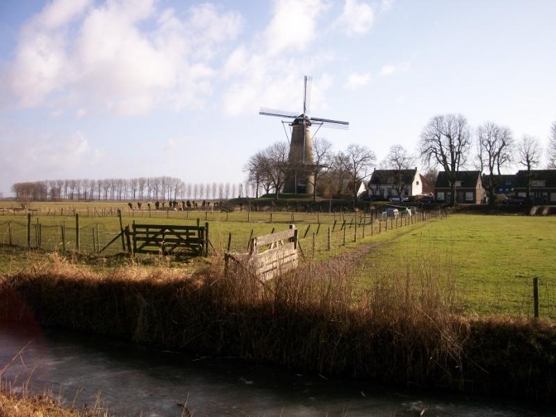 Molen-De-Prins-van-Oranje-Buren