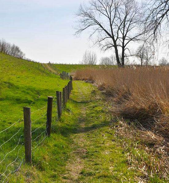 Wandelroutes in de Lingestreek