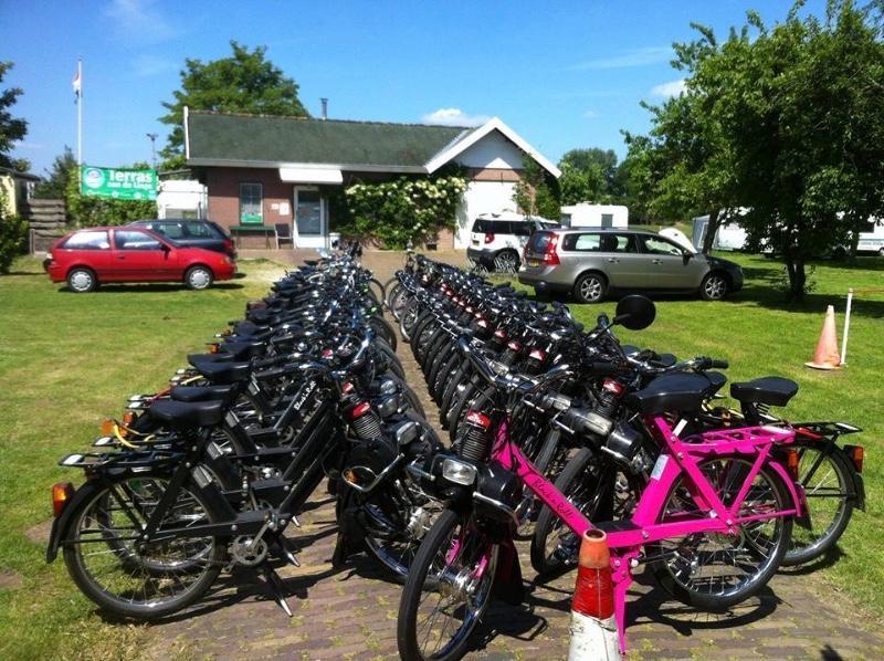 Aan-de-Linge-Recreatie-Tiel-fietsen