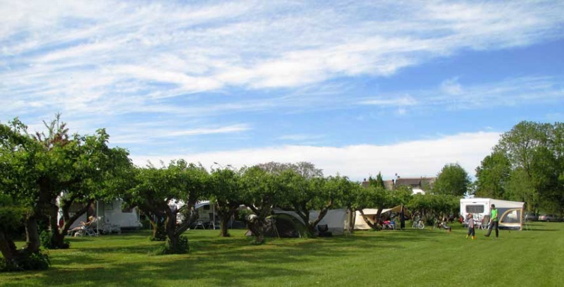 CampingDePit-Rumpt-veld