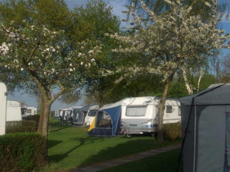 CampingTerLeede-Leerdam-bloesem