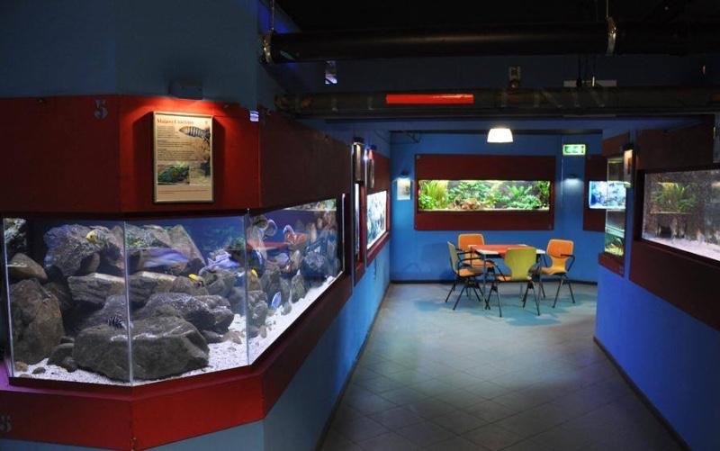Aqua-Zoo-Leerdam-binnen