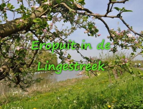 Eropuit in de Lingestreek (tips t/m zondag 28 okt.)